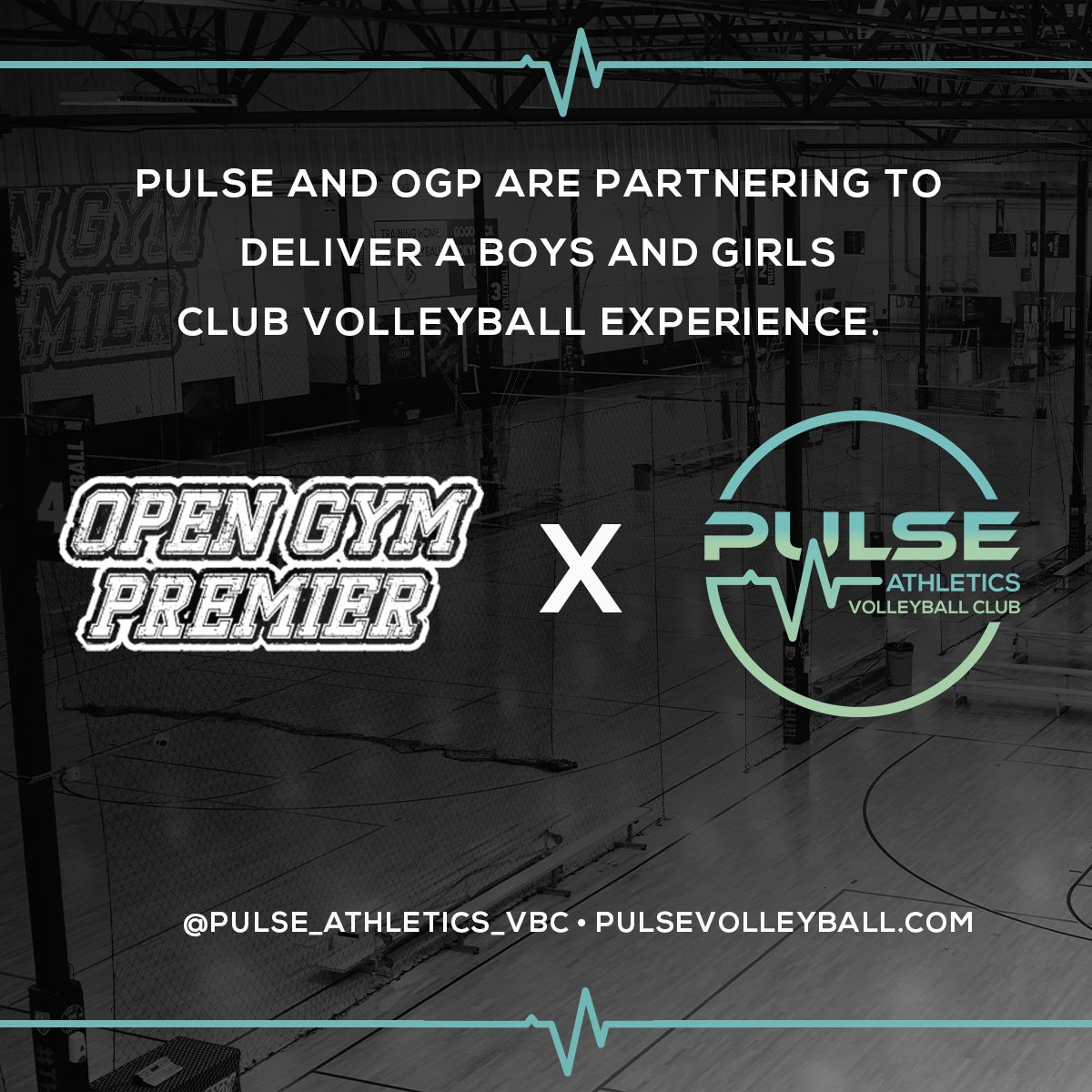 Welcome Pulse!